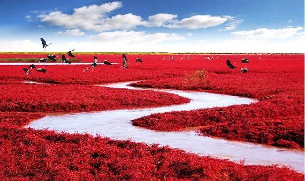 Praia Vermelha, China