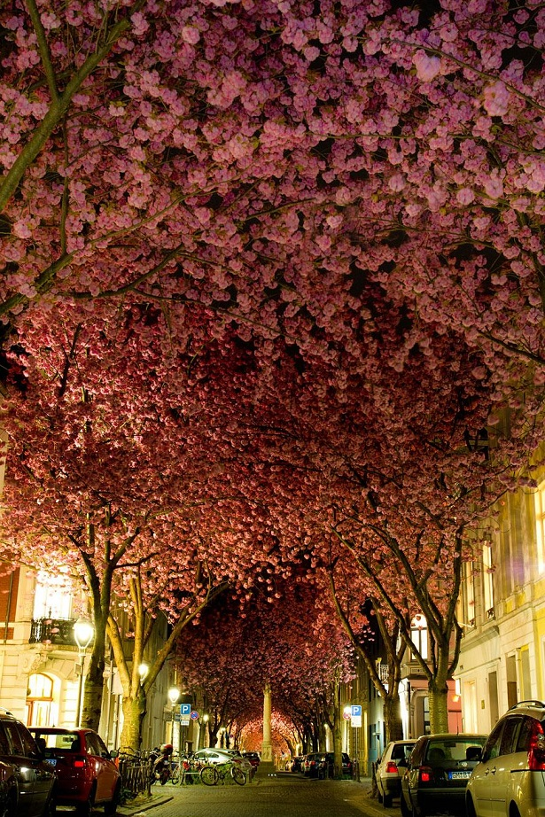 Rua em Bonn, Alemanha