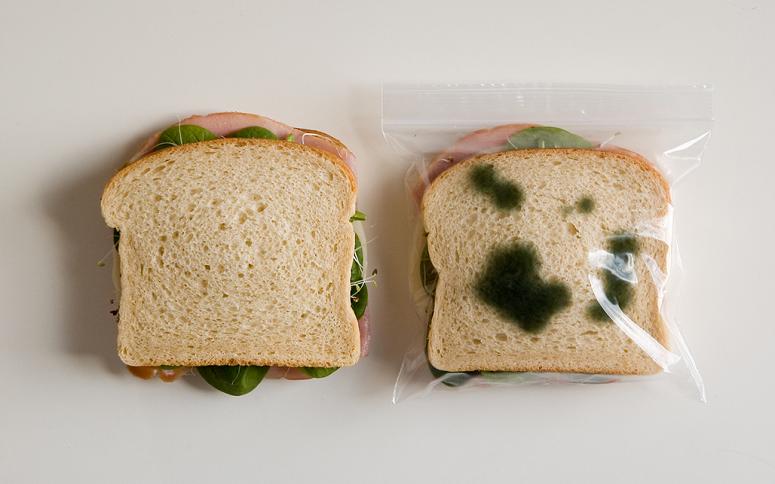 Anti-Theft Lunch Bag, o saco plástico criado para proteger seu sanduíche