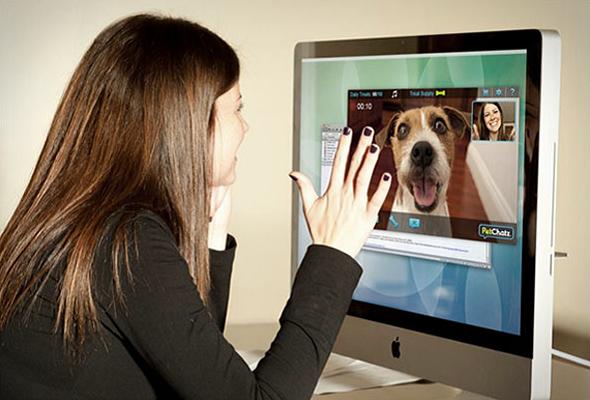 PetChatz: Cuide de seu animal de estimação enquanto estiver fora