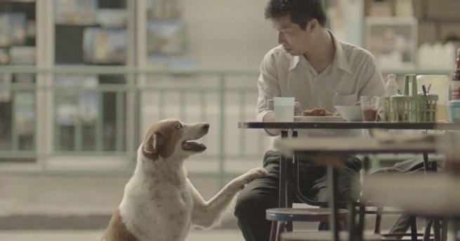 O Comercial Tailandês Que Fez O Mundo Chorar… Isso Fez Meu Dia!