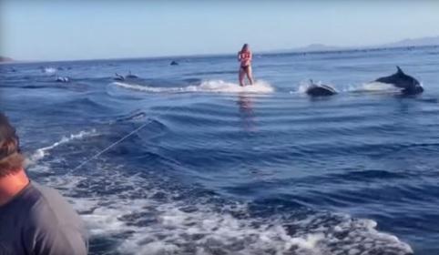 O Que Aconteceu Com Esta Praticante De Wakeboard É Absolutamente Sensacional… Assista, Apenas Assista!