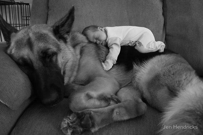 22 Incríveis Fotos De Pequenas Crianças Com Seus Enormes Cães