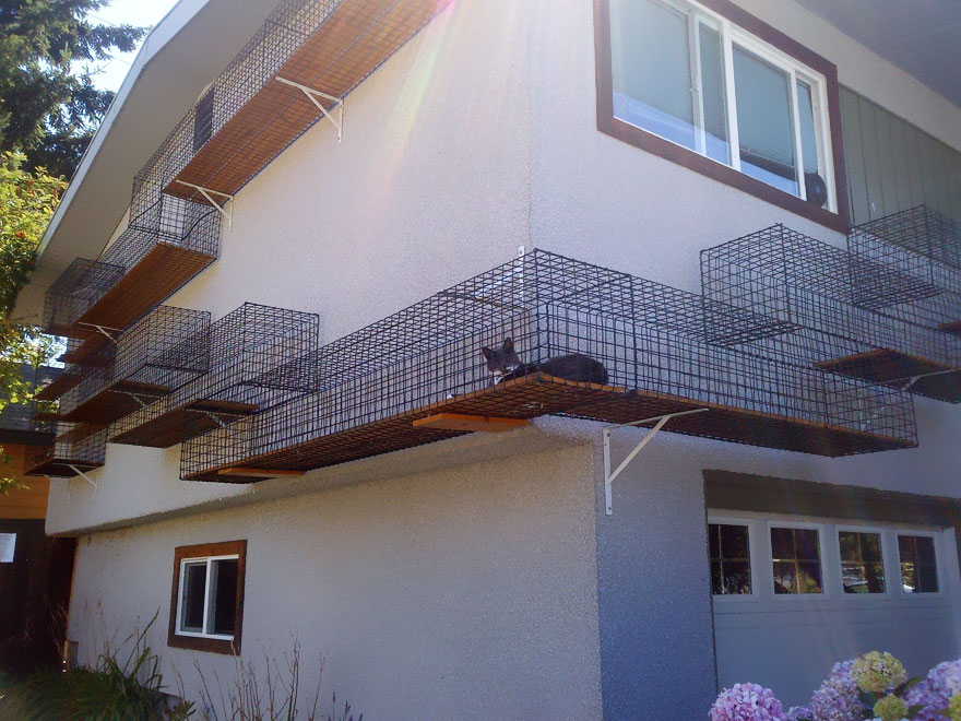 moveis-para-gatos-33