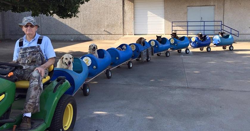 Aposentado Cria Trem Para Cachorros Resgatados. Os Animais Adoram!