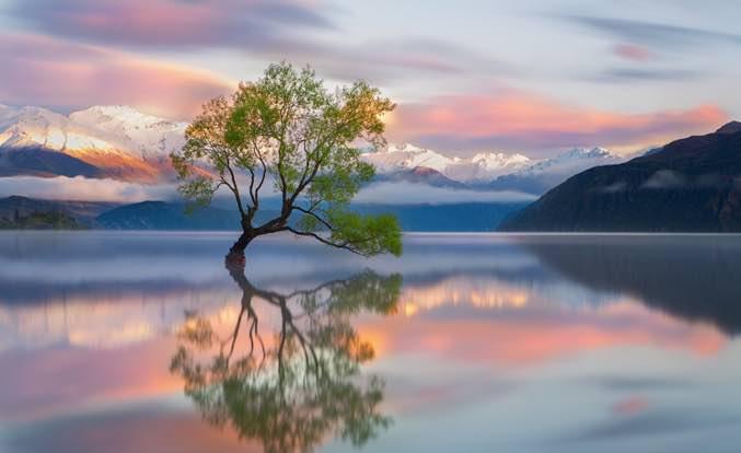 12 Vistas Da Nova Zelândia De Cair O Queixo