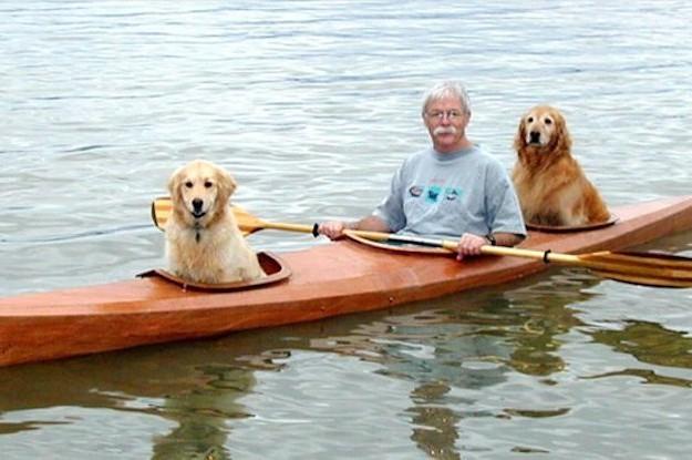 Este Senhor Construiu Um Caiaque Adaptado Para Seus Cães. É Muito Companheirismo.