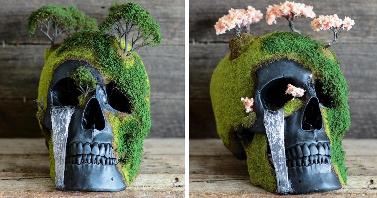 Bonsai Em Forma De Crânio Cria Uma Mistura Intrigante De Vida E Morte