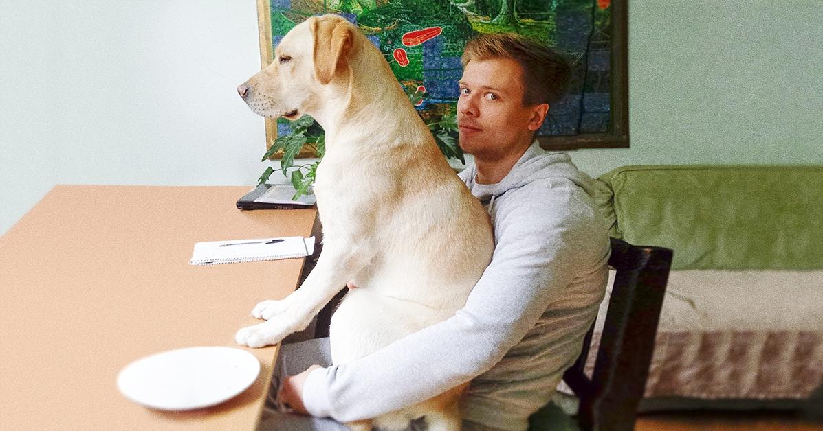 15 Cães Hilários Que Não Entendem Nada Sobre Espaço Pessoal