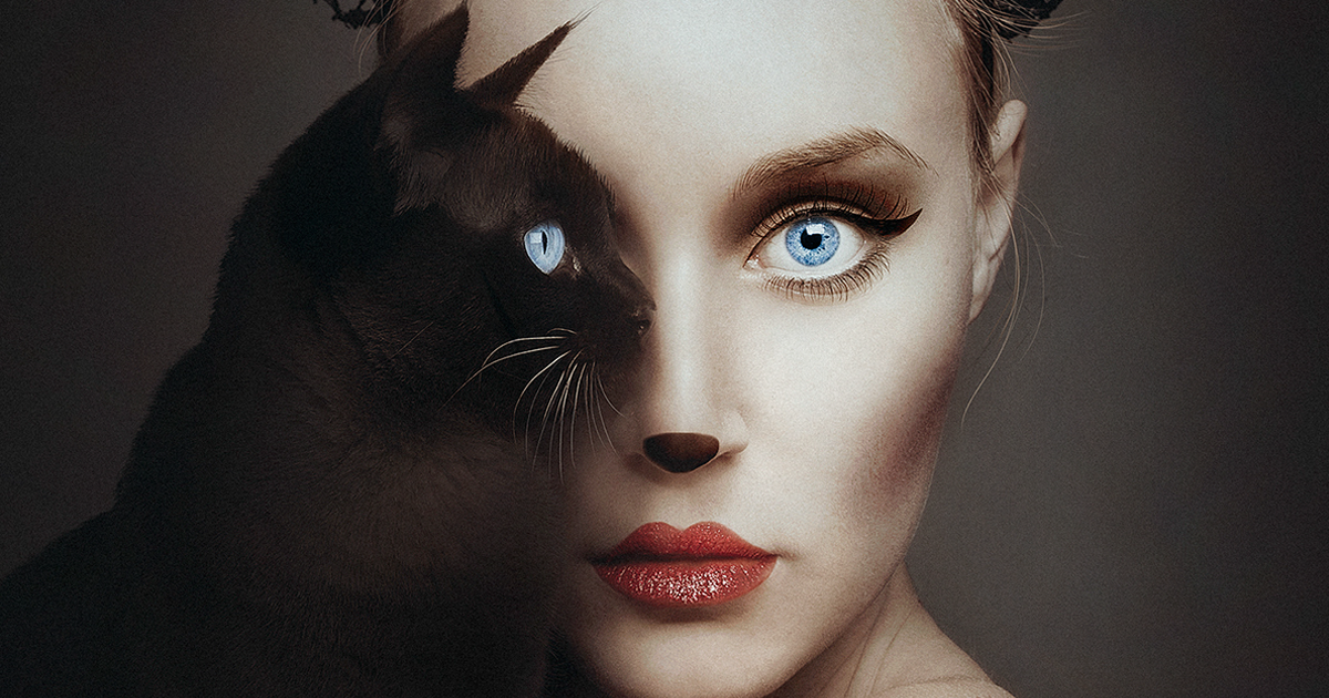 Artista Se Torna Uma Com Animais Substituindo Seu Olho Com O Deles