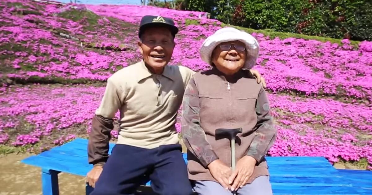 Marido Passa 2 Anos Plantando Milhares De Flores Para Que Sua Esposa Cega Possa Cheirar