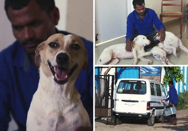 Homem Junta Dinheiro Por 10 Anos Para Comprar Ambulância E Salvar Animais Abandonados