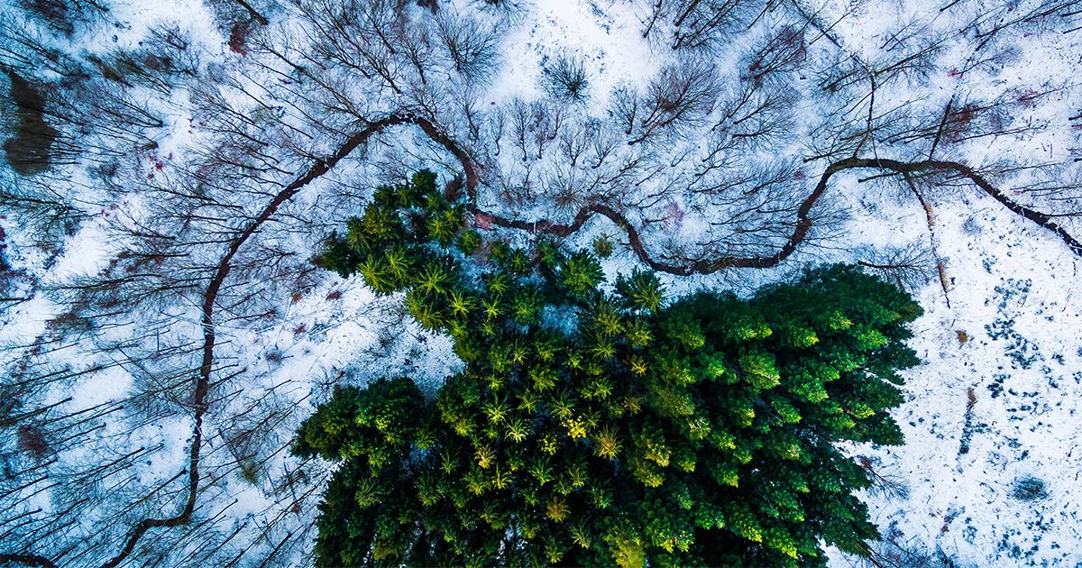 As 10 Melhores Fotos Tiradas Com Drones Em 2016
