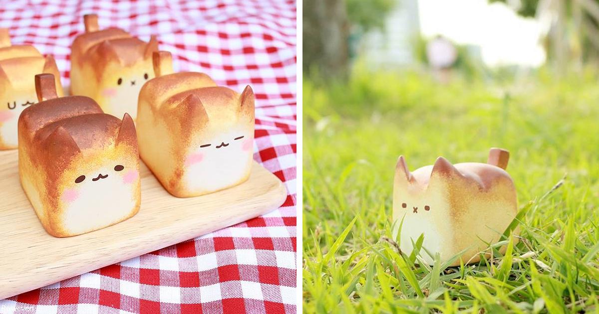 Conheça O Breadcat, O Pão Quentinho Em Formato De Gatinho