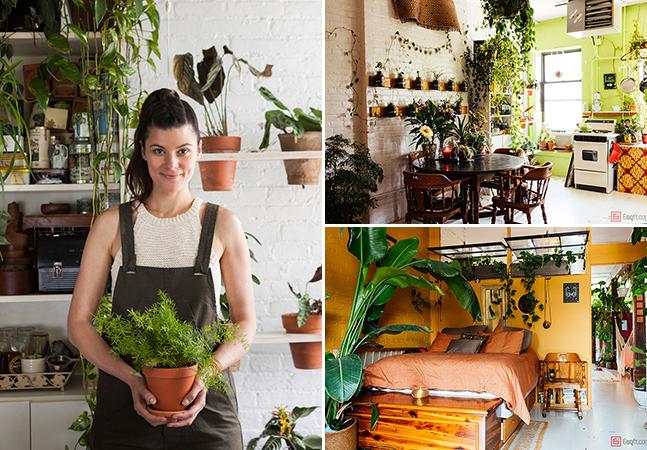 Mulher Cultiva Mais De 500 Plantas Em Seu Apartamento E O Resultado É Maravilhoso