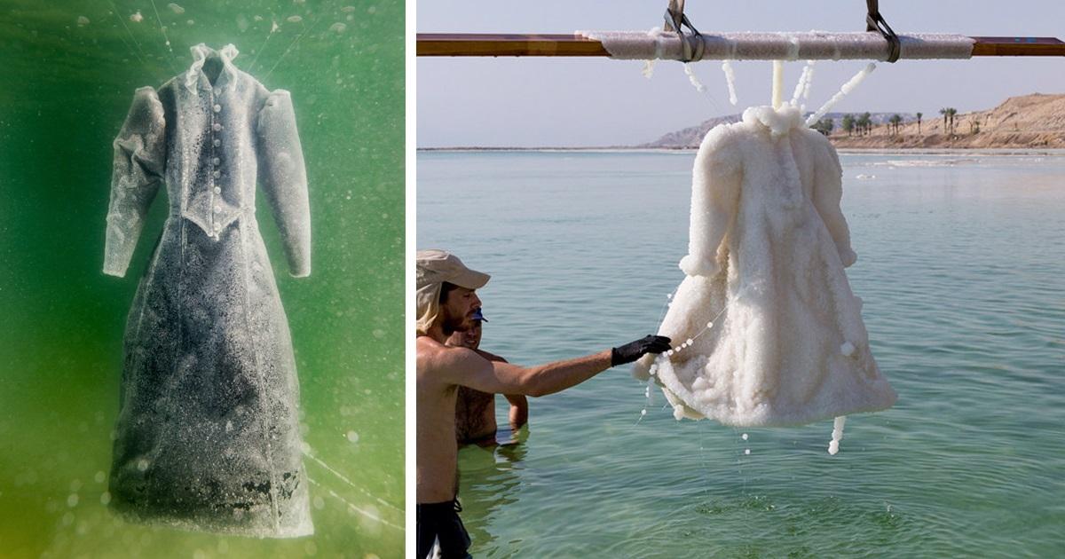 Artista Deixa Vestido No Mar Morto Por 2 Anos E Ele Se Transforma Em Uma Obra De Arte De Sal Cintilante