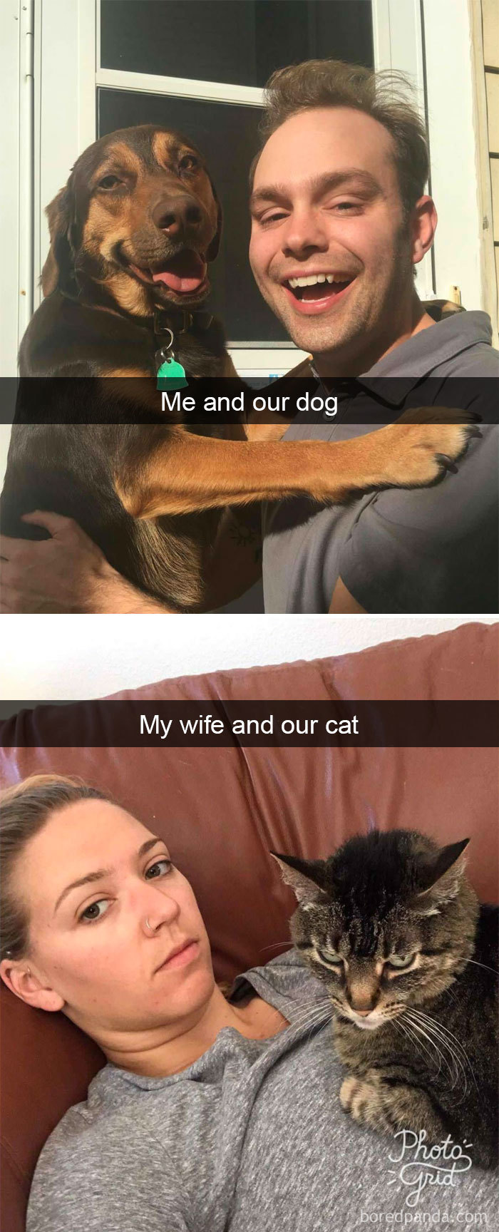 Me And Our Dog And My Wide And Our Cat