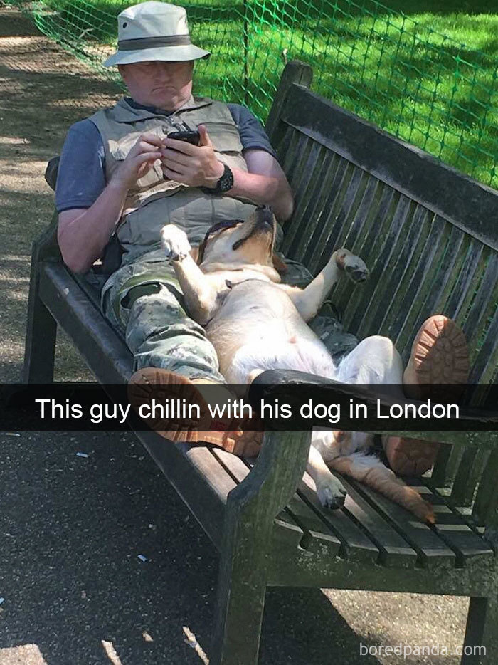 This Guy Chilling With His Dog In London
