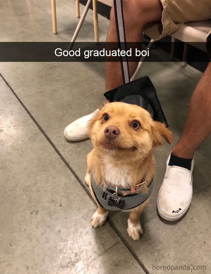 Good Graduated Boi
