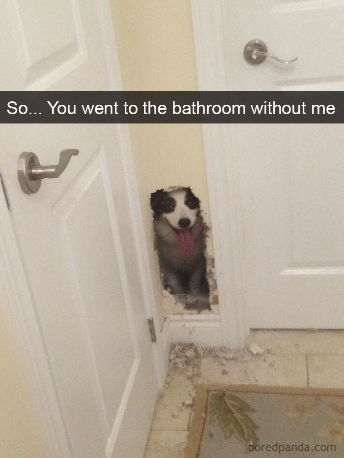 So... You Went To The Bathroom Without Me