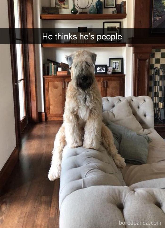He Thinks He's People