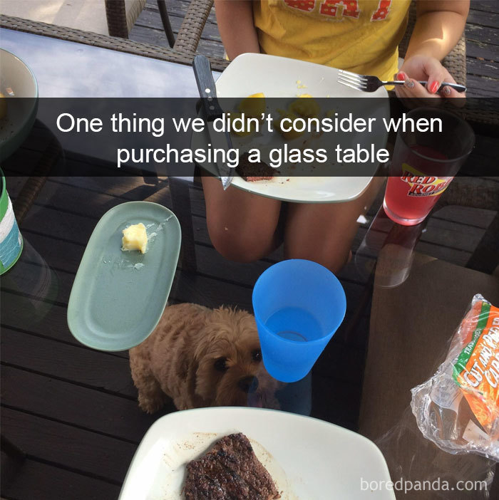 One Thing We Didn't Consider When Purchasing A Glass Table