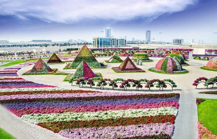 Conheça o The Dubai Miracle Garden, um enorme parque no deserto