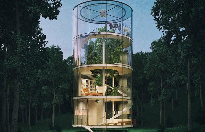 Uma casa construída em torno de uma árvore