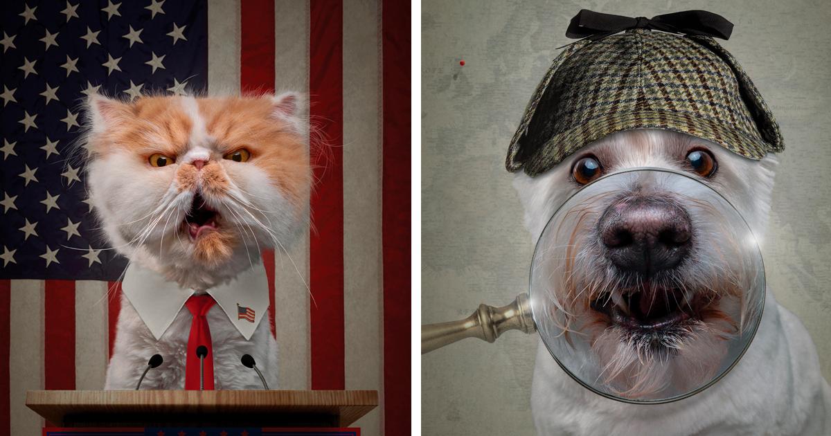 13 fotos de cães como personagens humanos fodões