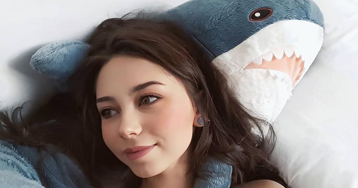 As pessoas estão perdendo a cabeça com este tubarão de pelúcia adorável além da conta