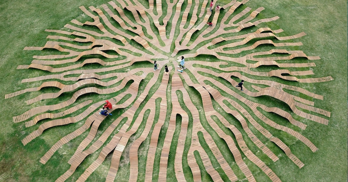 Banco de madeira inteligente se espalha como as raízes de uma árvore na Coreia do Sul