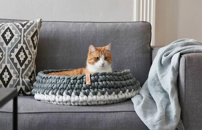 Mobiliário contemporâneo para gatos que vai bem em qualquer casa