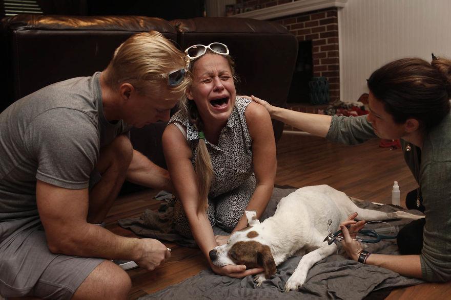 27 fotos comoventes que mostram as reações das pessoas aos seus animais de estimação sendo sacrificados