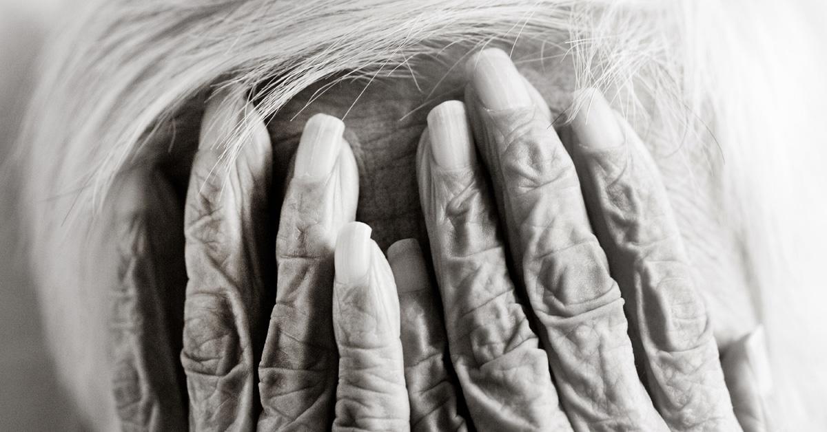 Retratos íntimos de pessoas com mais de 100 anos revelam a beleza de corpos envelhecidos