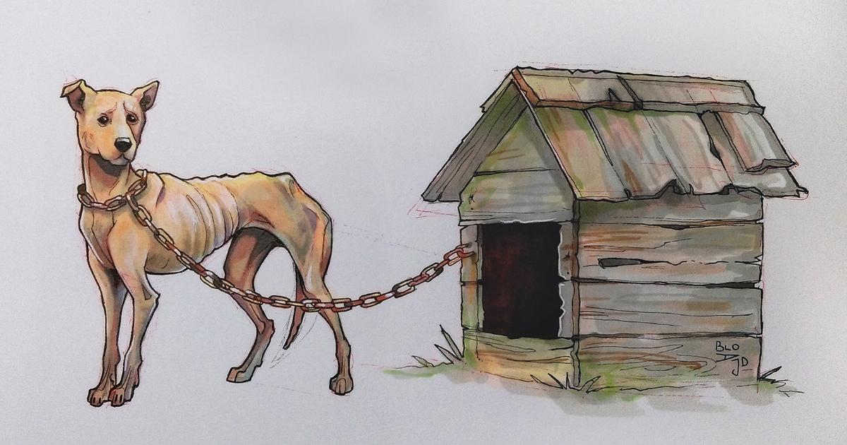 31 desenhos simbólicos para chamar atenção para o sofrimento animal