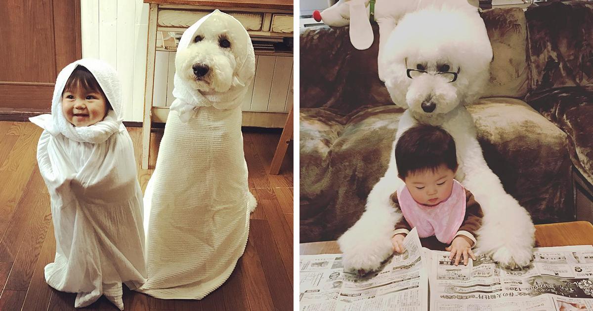 Esta garotinha japonesa e seu poodle de estimação vão fazer o seu dia