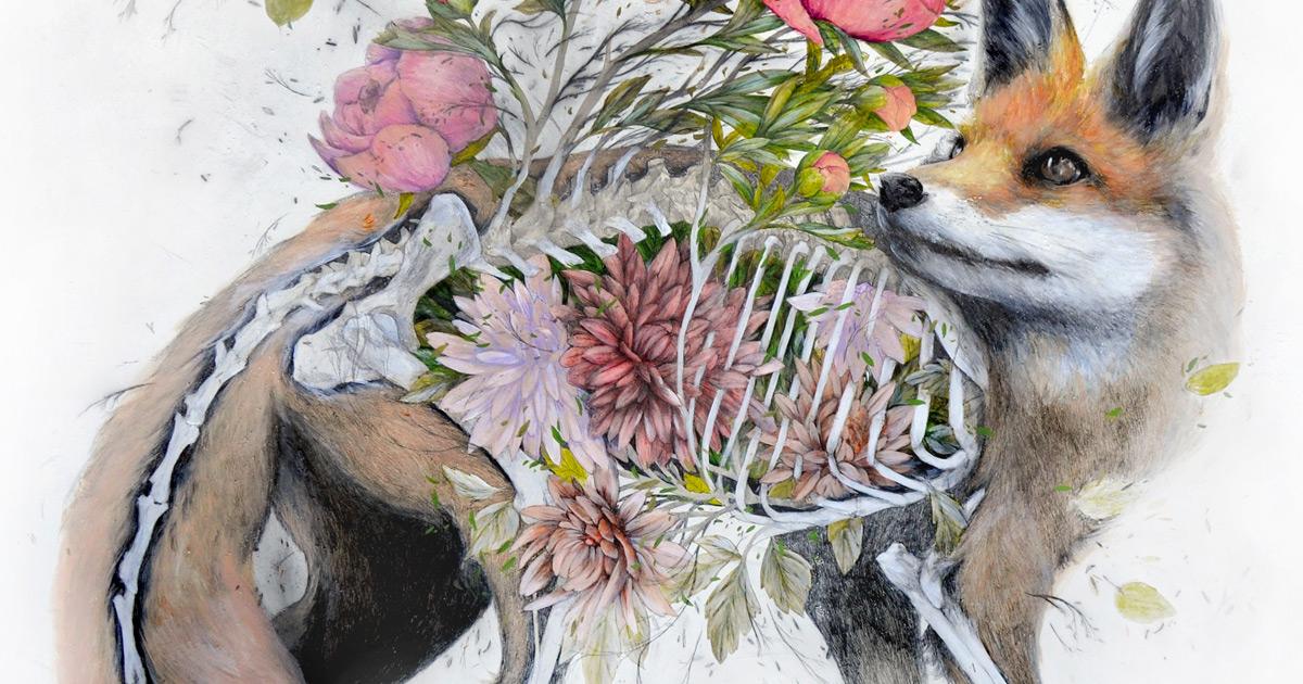Artista mescla humanos, flora e fauna em suas ilustrações anatômicas maravilhosas