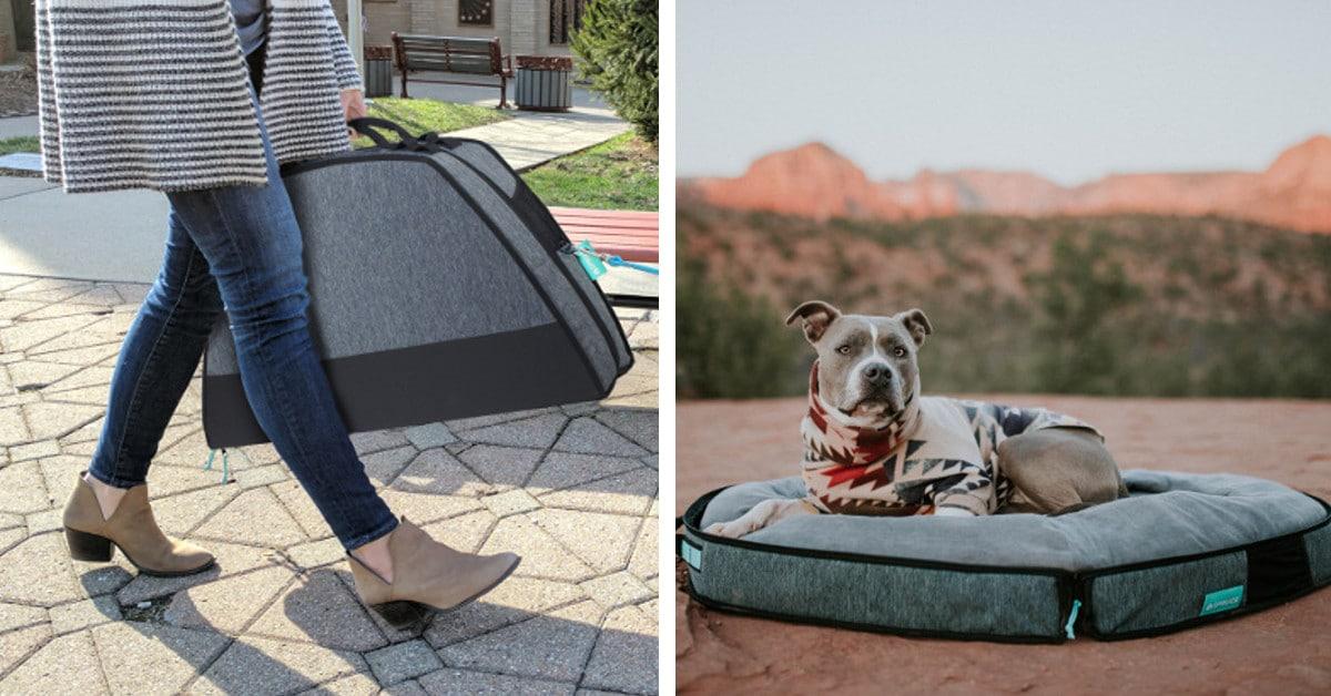 Cama para cachorros portátil e muito engenhosa também se revela como bagagem para os viajantes filhotes