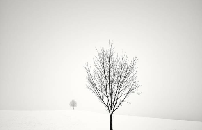 Fotógrafo suíço captura a beleza calma do inverno (35 fotos)