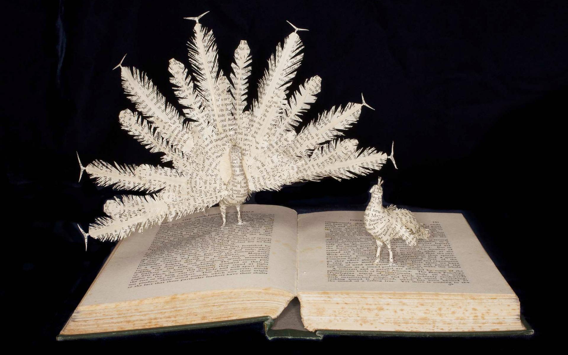 Novas narrativas tridimensionais a partir de livros descartados