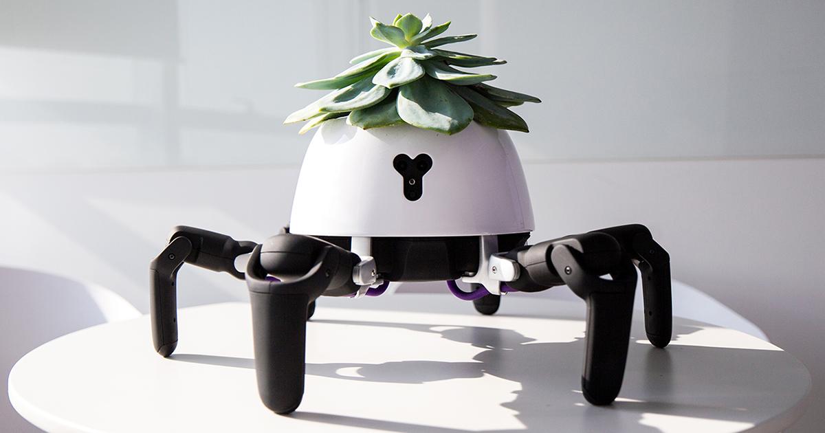 Este robô plantador vai perseguir a luz solar para manter suas plantas vivas