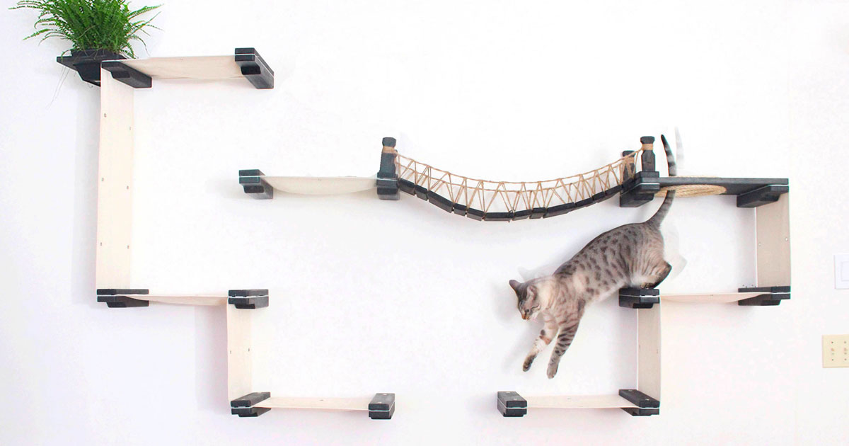 Sistemas modulares minimalistas transformam paredes em playgrounds para gatos