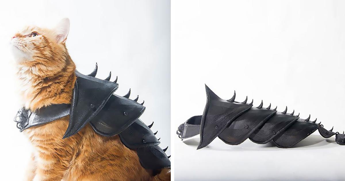 Dono deixa seu gato fodão com esta armadura impressa em 3D
