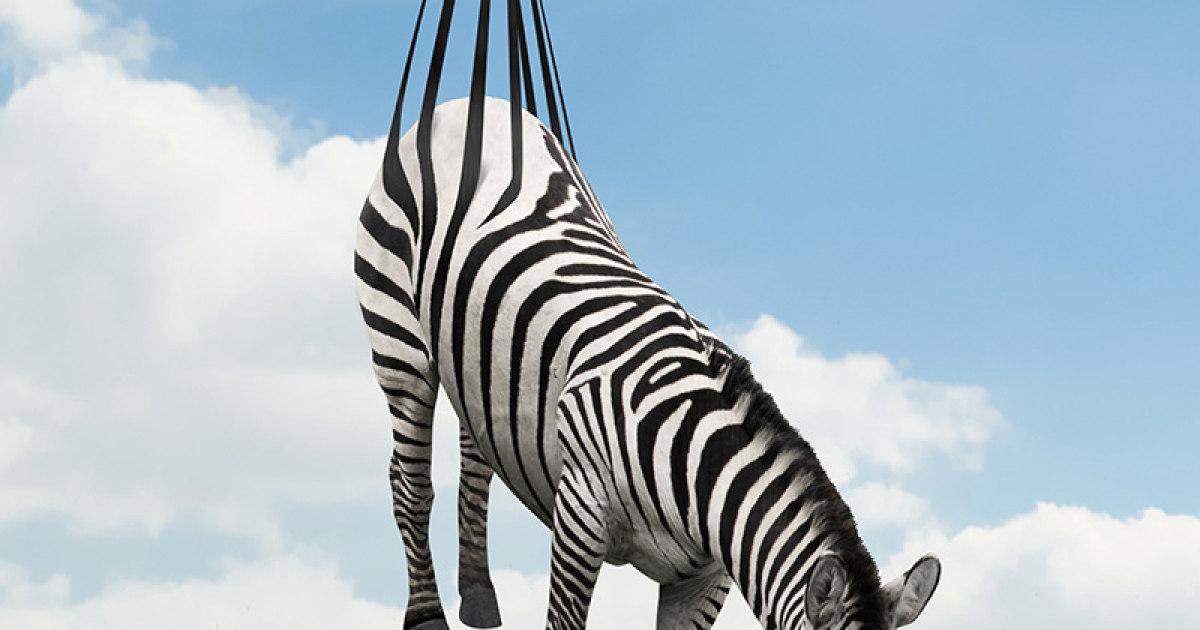 53 artes digitais incríveis com animais