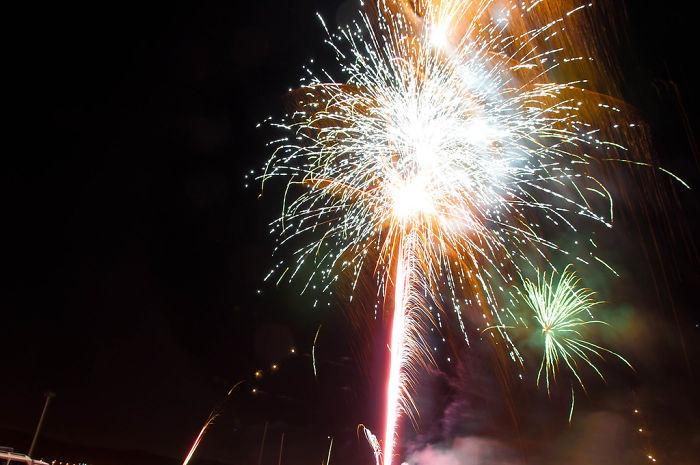 As pessoas estão deixando de lado os fogos de artifício neste feriado americano para confortar cães de abrigo assustados