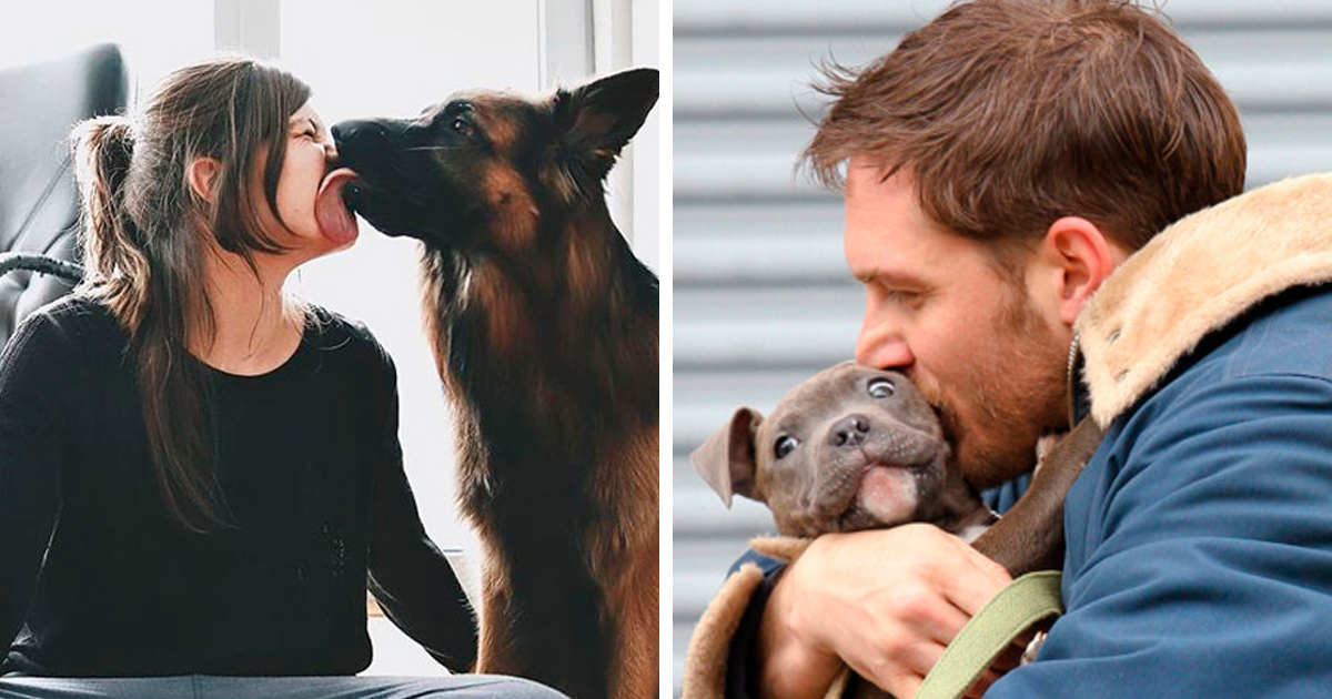 Pesquisa revela que pessoas beijam mais seus cães do que seus companheiros
