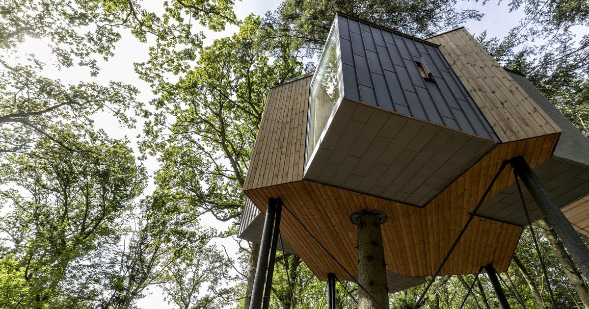 Este hotel na Dinamarca é a melhor casa na árvore para adultos