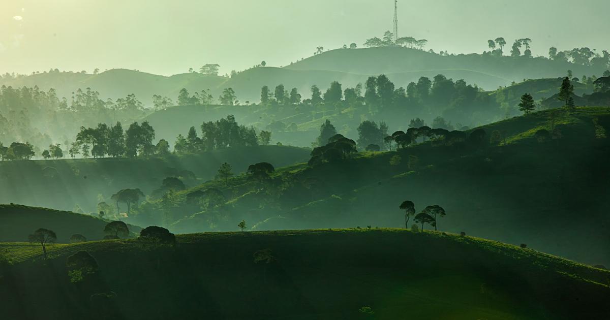 50 fotos de tirar o fôlego que mostram a beleza da natureza