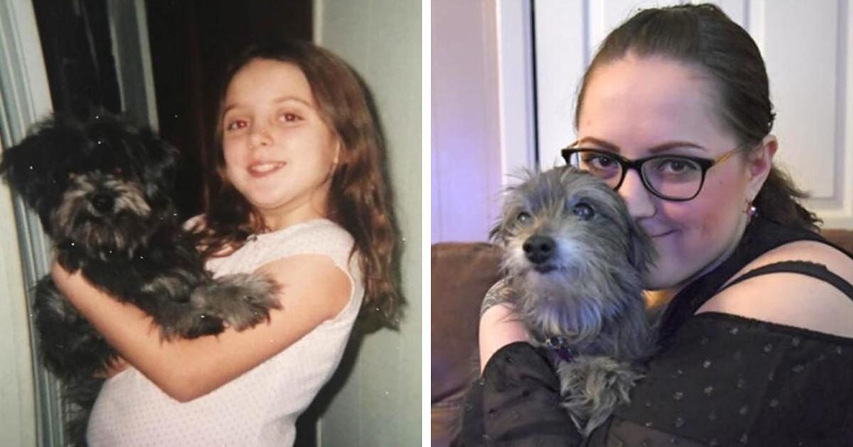 Mulher adota um cachorro mais velho porque parecia com seu cachorrinho de infância, e descobre que é o mesmo cachorro