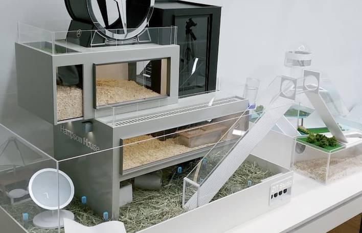 Se você acha que já viu de tudo, conheça as casas de luxo para hamsters